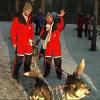 Safari trineo perros Laponia – Finlandia